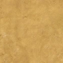 "Sandy Desert 48"" x 48"""