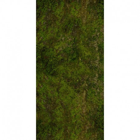 "Undergrowth 72"" x 36"""