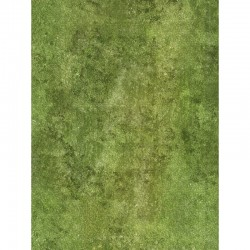 "Heroic Grass 30"" x 22"""