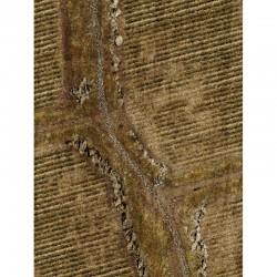"""Rice Fields 44"""" x 30"""""""