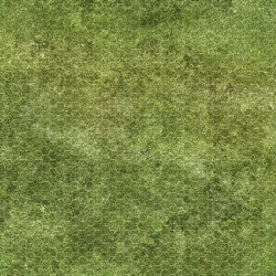 Dry-erase mat - Grass - hexagonal grid