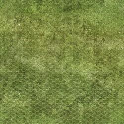 Dry-erase mat - Grass - hexagonal grid