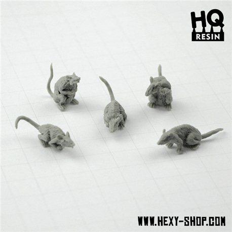 Giant Rats Set