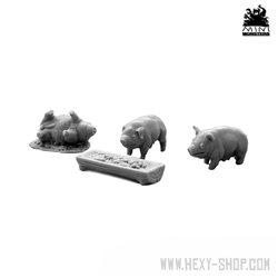 Three Pigs & Trough
