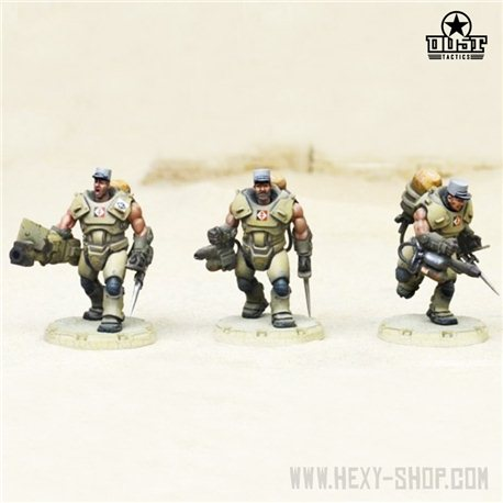 Desert Scorpions FFL Heavy Engineer Squad