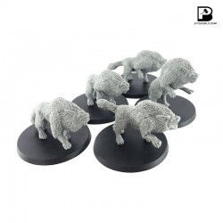 Fell Wolves Pack (5)