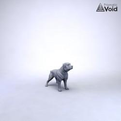 War Dog - Brutus