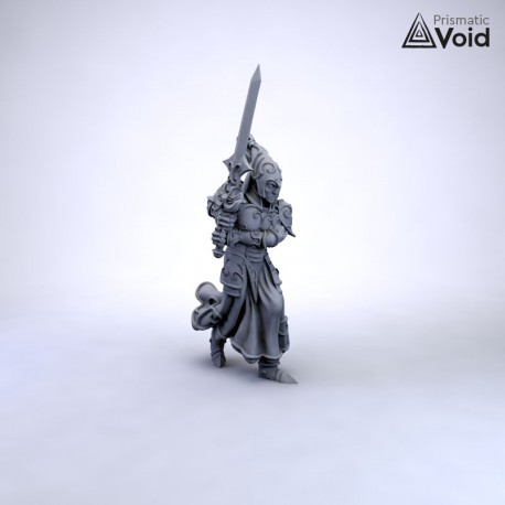 Elven Champion - Dudikael