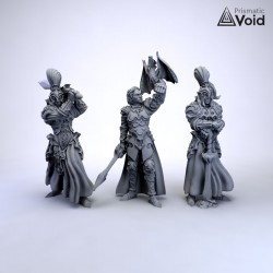 Elven King with Royal Guards