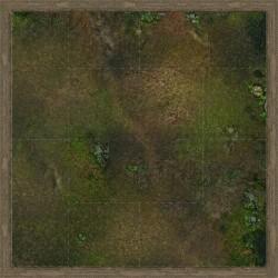 Malifaux - Swamp